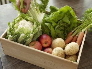 Hand taking crate with fresh fruit and vegetables Keine Weitergabe an Drittverwerter., Royalty free: Bei werblicher Verwendung Preis auf Anfrage